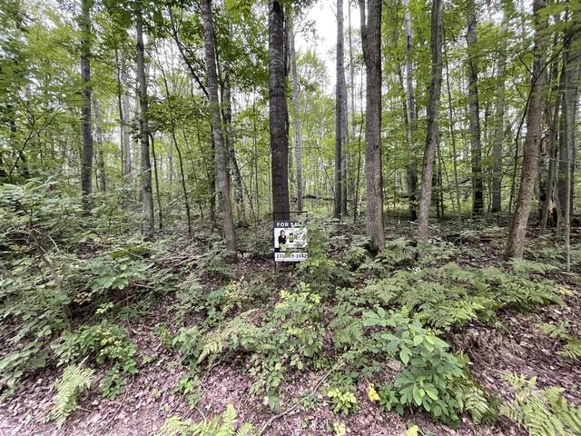 Lot #216 Lucerne Drive, Reed City, MI 49677 (MLS #21003084) :: Sold by Stevo Team | @Home Realty