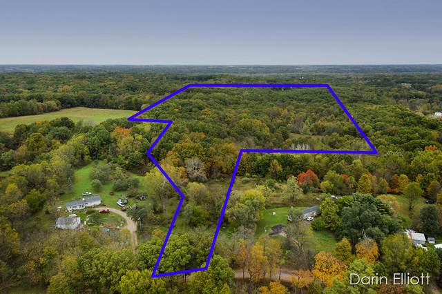 Parcel 1 W Peck Lake, Saranac, MI 48881 (MLS #21003112) :: Sold by Stevo Team | @Home Realty