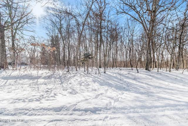 Lots 21, 22 Limberlost Road, Three Rivers, MI 49093 (MLS #21004156) :: CENTURY 21 C. Howard