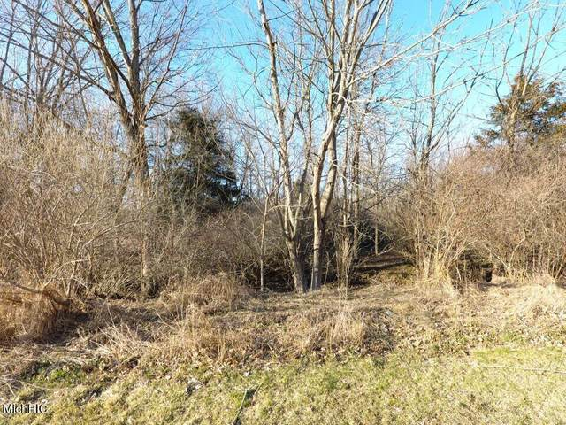 TBD E Main Street, Maple Rapids, MI 48853 (MLS #21008790) :: Your Kzoo Agents
