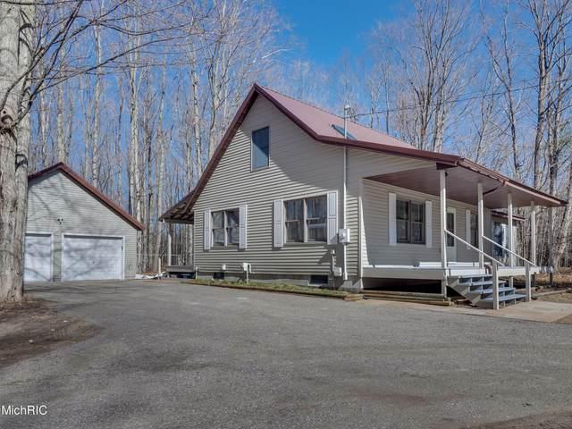 6488 Big Bay Road, Bear Lake, MI 49614 (MLS #21011459) :: Keller Williams Realty | Kalamazoo Market Center