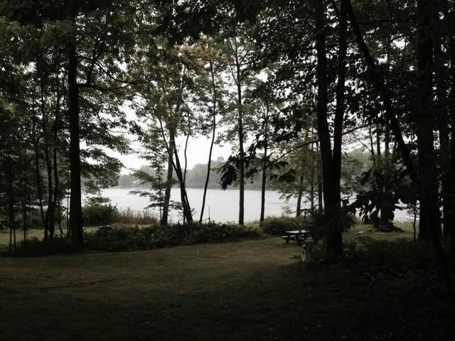 (Lot 28) Wildwood Road, Evart, MI 49631 (MLS #21014051) :: CENTURY 21 C. Howard