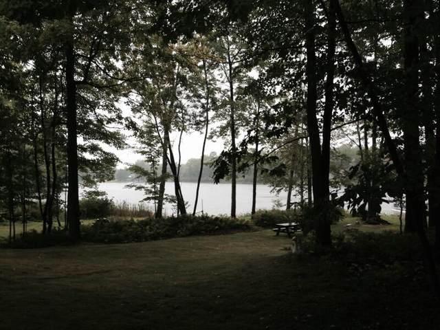 (Lot 28) Wildwood Road, Evart, MI 49631 (MLS #21014051) :: BlueWest Properties