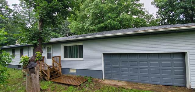 317 Mill Street, Mendon, MI 49072 (MLS #21017626) :: BlueWest Properties