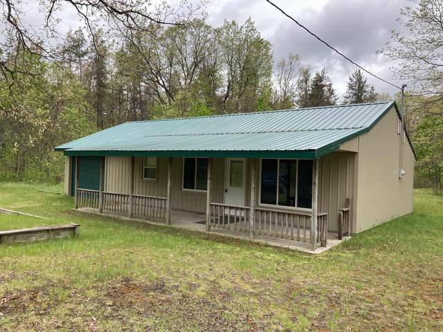10573 N River Drive Ranch Road, Irons, MI 49644 (MLS #21018016) :: JH Realty Partners