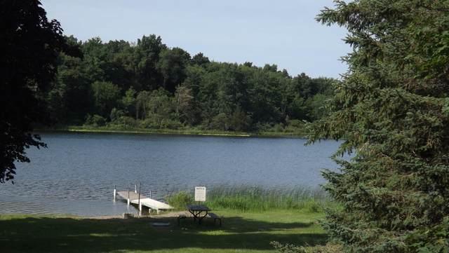 1023 Siler Drive, Bronson, MI 49028 (MLS #21021066) :: BlueWest Properties