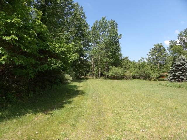 N Buys Road, Muskegon, MI 49445 (MLS #21021249) :: BlueWest Properties