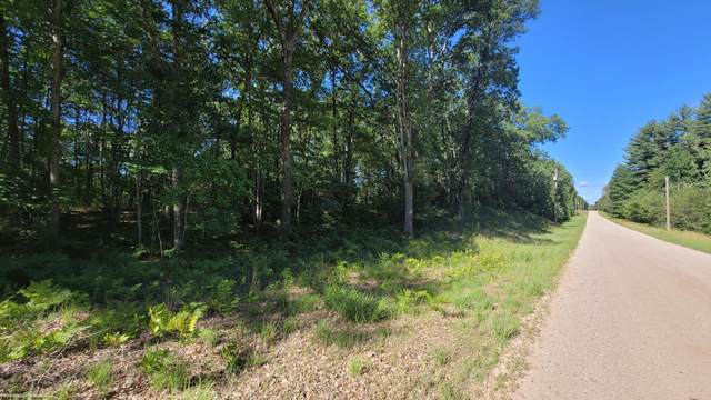 V/L E Hasenbank Road, Free Soil, MI 49411 (MLS #21025498) :: BlueWest Properties