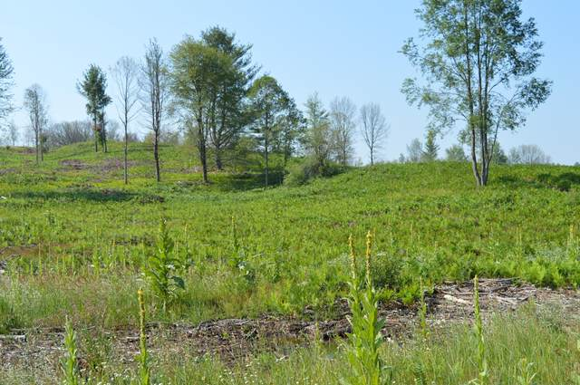 D E 16 Mile Road, Reed City, MI 49677 (MLS #21025811) :: JH Realty Partners