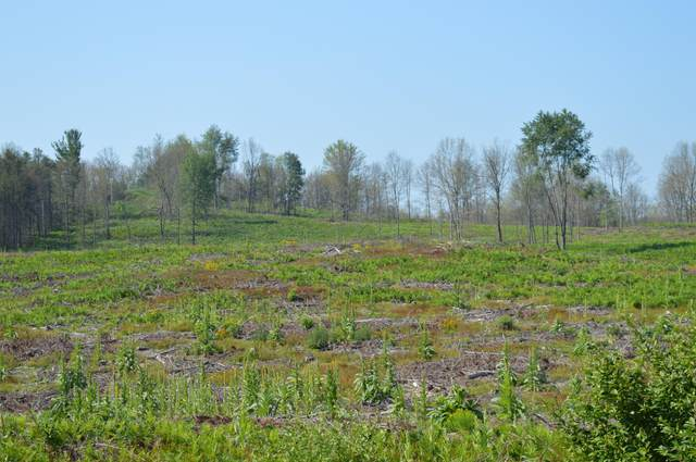 F E 16 Mile Road, Reed City, MI 49677 (MLS #21025816) :: JH Realty Partners