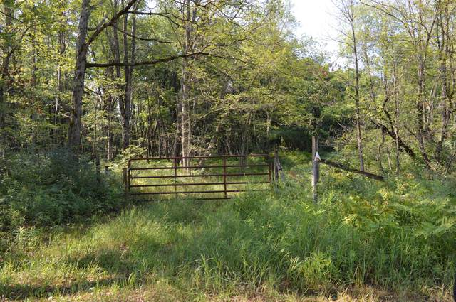 H E 16 Mile Road, Reed City, MI 49677 (MLS #21025818) :: JH Realty Partners