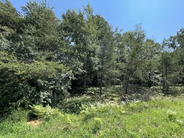 Lot 10 Blossom Trail, Manistee, MI 49660 (MLS #21097780) :: Deb Stevenson Group - Greenridge Realty