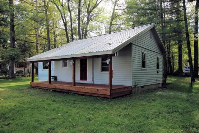 666 W Lake Avenue, White Cloud, MI 49349 (MLS #21100495) :: Sold by Stevo Team   @Home Realty