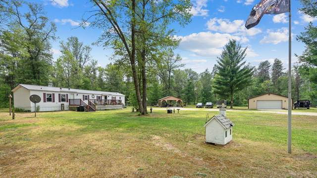 5153 S Nelson Road, Chase, MI 49623 (MLS #21100716) :: The Hatfield Group