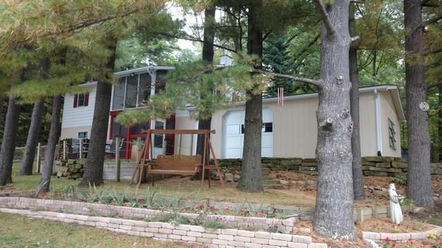 8196 Wildwood Road, Reading, MI 49274 (MLS #21102675) :: Sold by Stevo Team | @Home Realty