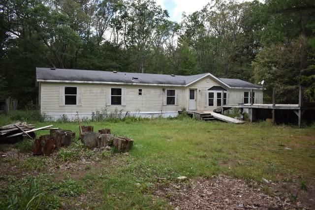 8475 S Maple Island Road, Fremont, MI 49412 (MLS #21104720) :: Deb Stevenson Group - Greenridge Realty