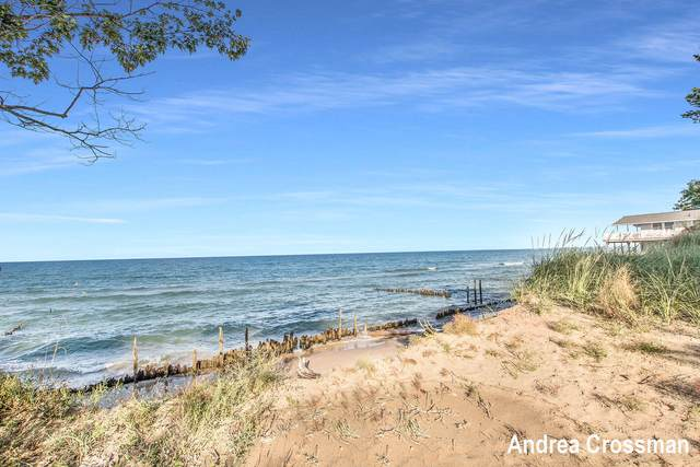 10579 Lost Valley Road, Montague, MI 49437 (MLS #21106178) :: JH Realty Partners