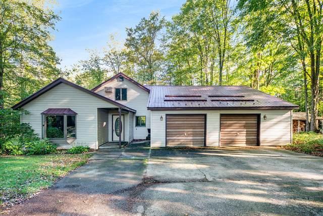 683 N Catalpa Avenue, White Cloud, MI 49349 (MLS #21106439) :: Sold by Stevo Team | @Home Realty