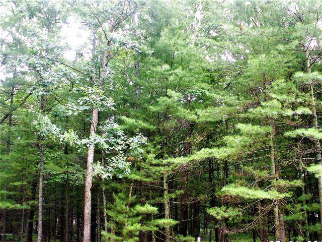 Lot 40 Meadow Wood Dr, Manistee, MI 49660 (MLS #21106763) :: Sold by Stevo Team | @Home Realty