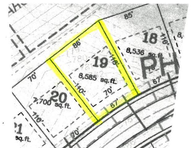 Shimano Drive #19, Portland, MI 48875 (MLS #21108215) :: Sold by Stevo Team | @Home Realty