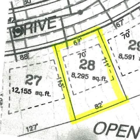 Shimano Drive #28, Portland, MI 48875 (MLS #21108217) :: Sold by Stevo Team | @Home Realty