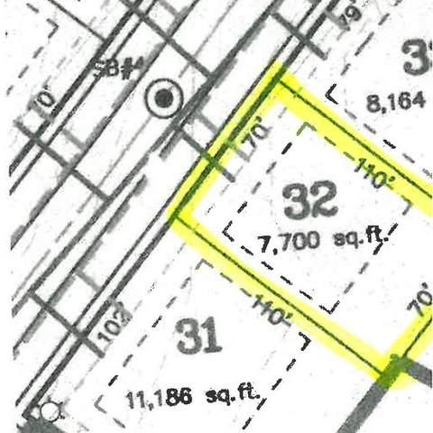 Shimano Drive #32, Portland, MI 48875 (MLS #21108218) :: Sold by Stevo Team | @Home Realty