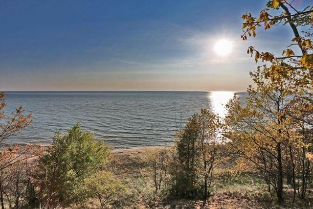 Lot 8 Sheltering Way, Whitehall, MI 49461 (MLS #21110037) :: Sold by Stevo Team | @Home Realty