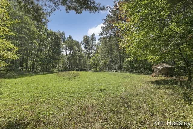 14680 Wabasis Avenue NE B, Cedar Springs, MI 49319 (MLS #21110807) :: Sold by Stevo Team | @Home Realty