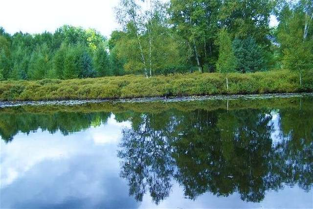 9195 Golf Port Drive, Canadian Lakes, MI 49346 (MLS #21111510) :: CENTURY 21 C. Howard
