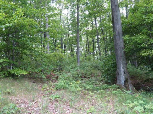 Silver Vista Lane #3, Mears, MI 49436 (MLS #13034775) :: JH Realty Partners