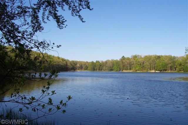 6916 W Twin Lakes Drive, Irons, MI 49644 (MLS #13065879) :: Deb Stevenson Group - Greenridge Realty