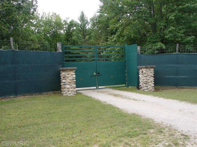 6224 Vanderbilt Road, Vanderbilt, MI 49795 (MLS #14042750) :: Deb Stevenson Group - Greenridge Realty