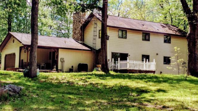 18720 Nine Mile Road, Kaleva, MI 49645 (MLS #17024102) :: Deb Stevenson Group - Greenridge Realty
