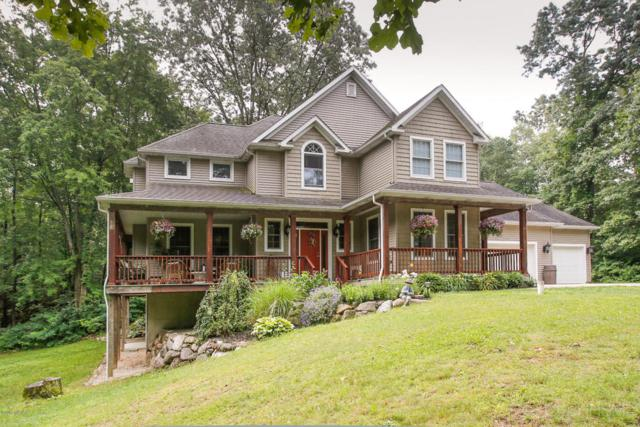 21444 W County Line Road, Augusta, MI 49012 (MLS #17037869) :: Matt Mulder Home Selling Team