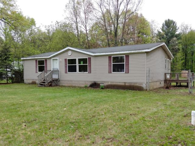 1793 Beaver Road, Bitely, MI 49309 (MLS #18016057) :: Carlson Realtors & Development