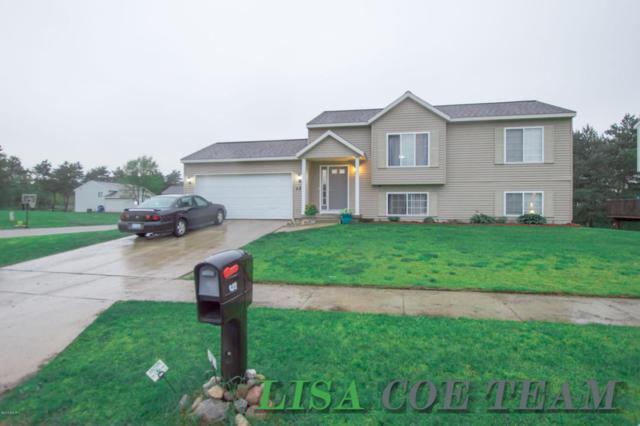 422 White Pine Court, Belding, MI 48809 (MLS #18022560) :: Carlson Realtors & Development