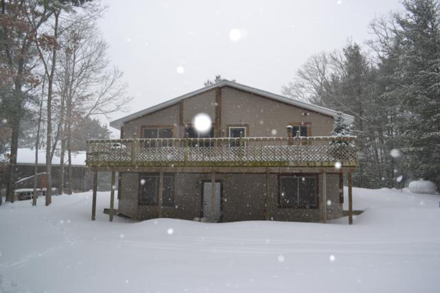 2972 S Spruce, White Cloud, MI 49349 (MLS #19005011) :: Deb Stevenson Group - Greenridge Realty