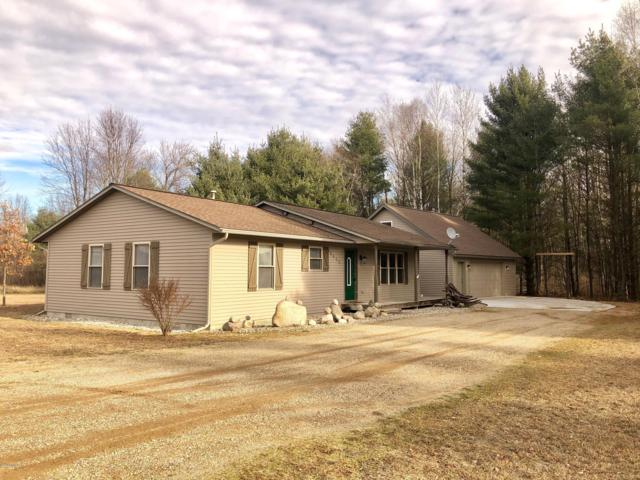 8600 W Pleasant Valley Road, Blanchard, MI 49310 (MLS #19006845) :: Deb Stevenson Group - Greenridge Realty