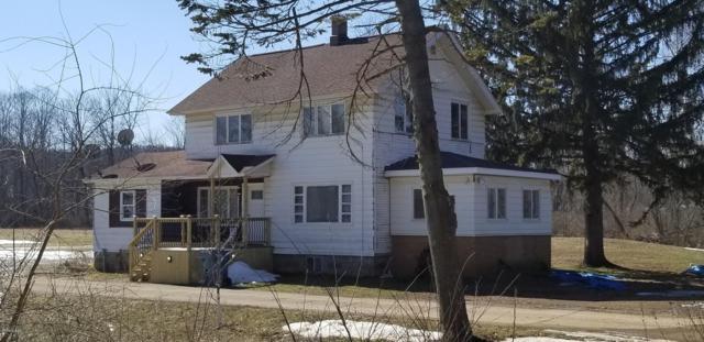 722 River Road, Otsego, MI 49078 (MLS #19008595) :: Matt Mulder Home Selling Team