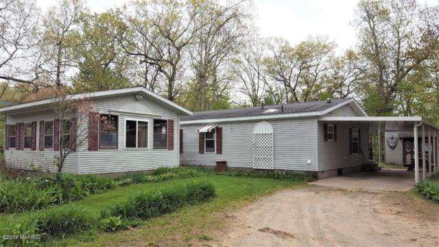 3799 Dorai Drive, Pierson, MI 49339 (MLS #19018216) :: Matt Mulder Home Selling Team