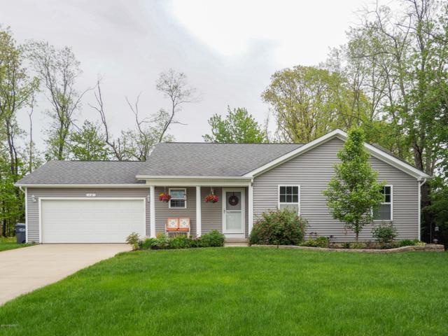 12 Murphys Trail, Kalamazoo, MI 49009 (MLS #19021302) :: Matt Mulder Home Selling Team