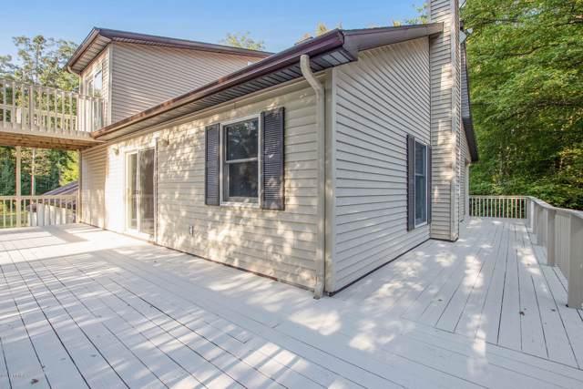5098 E 92nd Street, Newaygo, MI 49337 (MLS #19041324) :: Deb Stevenson Group - Greenridge Realty