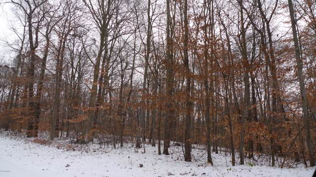 8-Lot W Kimberly Lane Lot #8, Pierson, MI 49339 (MLS #19051486) :: Deb Stevenson Group - Greenridge Realty