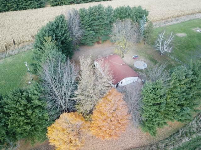 2233 S Lake Pleasant Road, Osseo, MI 49266 (MLS #19053444) :: Deb Stevenson Group - Greenridge Realty