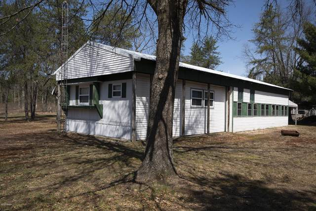 11066 N Merrillville Road, Irons, MI 49644 (MLS #20007506) :: Deb Stevenson Group - Greenridge Realty