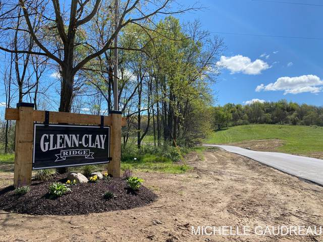 Glenn Clay Ct - Parcel 1, Freeport, MI 49325 (MLS #21009073) :: Keller Williams Realty | Kalamazoo Market Center