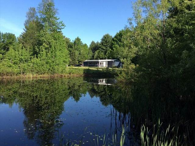 5960 North Trail Se, Kalkaska, MI 49646 (MLS #21015034) :: Sold by Stevo Team | @Home Realty