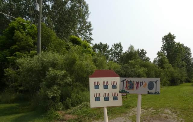 249-& 253 E Maple Street NE, Cedar Springs, MI 49319 (MLS #21021034) :: BlueWest Properties