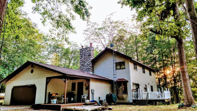 18720 Nine Mile Road, Kaleva, MI 49645 (MLS #17024102) :: Matt Mulder Home Selling Team