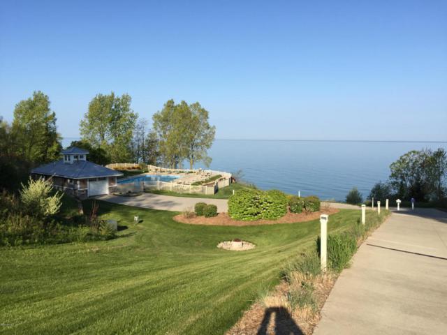 7180 Windcliff Drive, South Haven, MI 49090 (MLS #18001802) :: Carlson Realtors & Development